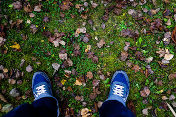 Autumn Adventures - image #294843 gratis