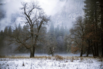 Yosemite Magic - Free image #295363