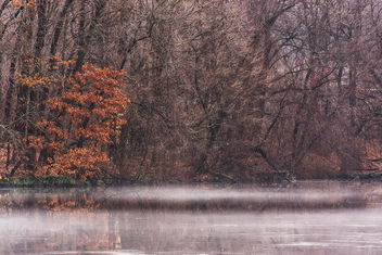 Misty - Free image #295653
