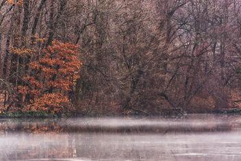 Misty - image gratuit #295653