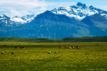 Welcome to the Andes - Kostenloses image #295823