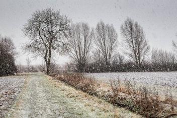 20150131__5D_2384 - RSPB Ouse Fen Snowy Day.jpg - Free image #296023