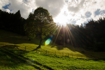 Mountain sunshine - Free image #296363