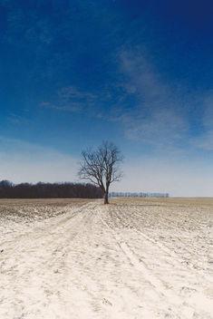 Left Alone. - бесплатный image #296493