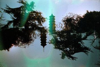 Kew Gardens - Free image #296883