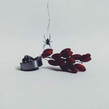 Spider art - Kostenloses image #297583