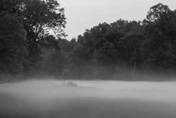 Misty river - Free image #299313