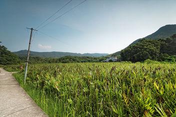 HK's village - Free image #299653