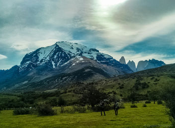 Watching Torres del Paine - бесплатный image #300243