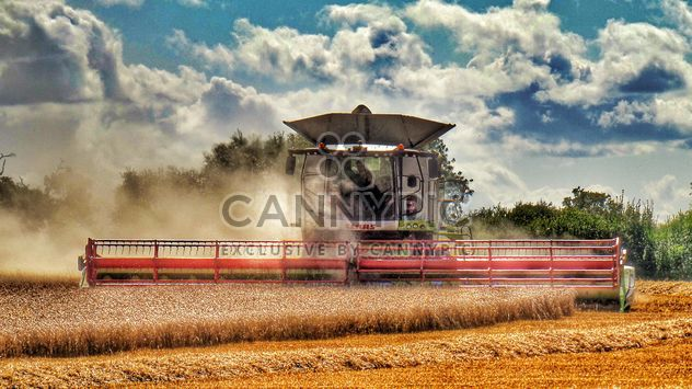 Grain agriculture machinery - Free image #302793