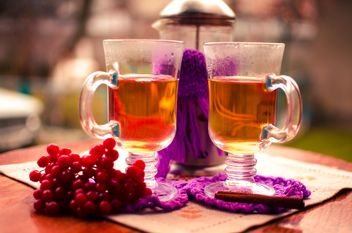 warm tea with cinnamon - image gratuit #302933