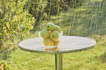 Summer rain and green apples - image gratuit #303273