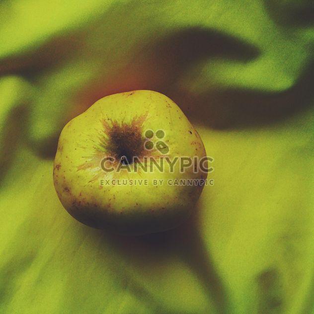 Pomme jaune - image gratuit(e) #303293