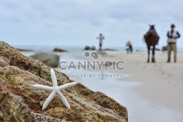 People on the beach in blur - Free image #303763