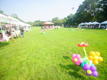 Amusing balloons in park - Free image #304483
