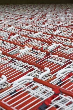 Sea of Carts - 2942.jpg - Free image #309713