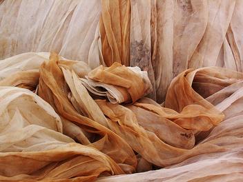 Netting Landscape - Free image #310223