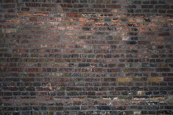 strainstation - with my back against the brick wall texture - Kostenloses image #312003