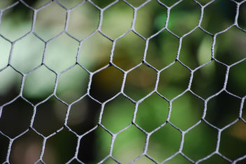 Caged Bokeh - Texture #1 - Free image #312133