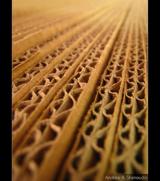 Cardboard Fibers - Free image #313433