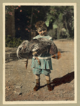 Vintage Portrait Photo Picture of a Child holding a Turkey Bird - бесплатный image #314153