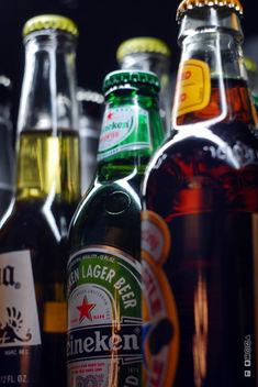 Beer - Kostenloses image #317233