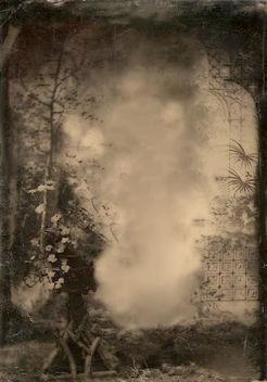 Foliage Backdrop - Free image #321943