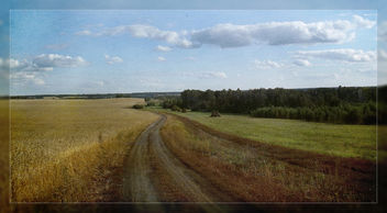 landscape - Free image #323043