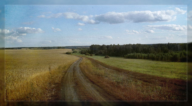 landscape - бесплатный image #323043