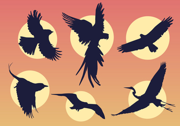 Flying birds - Free vector #326623