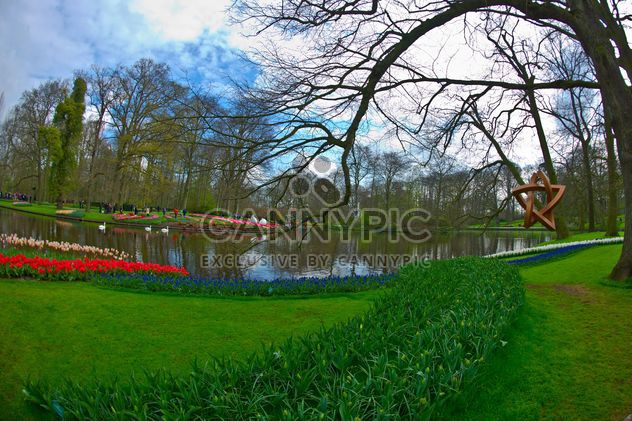 Lac au printemps, le parc de Keukenhof, Hollande - Free image #329143