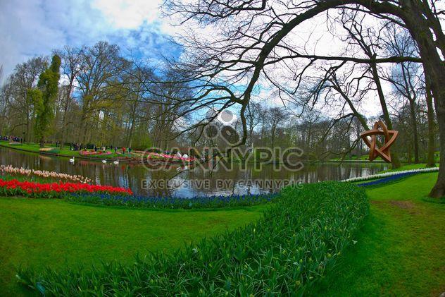 Lago na primavera Parque Keukenhof, Holanda - Free image #329143