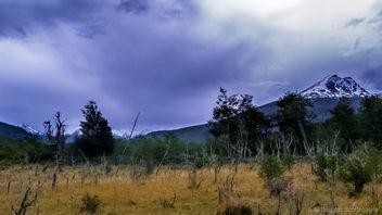 Tierra del Fuego - Free image #329573