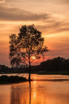 Sunset at river - Free image #329973