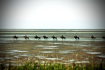 Horse riders running afar - Free image #332933