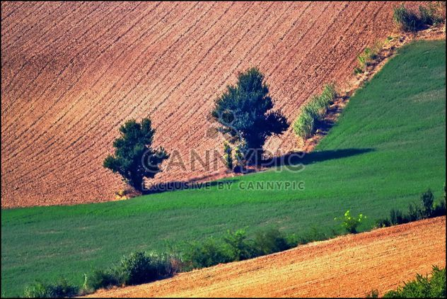 View on Monferrato village in Piemonte - Free image #334753