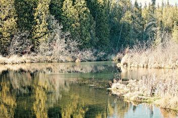 Nature - image gratuit #336453