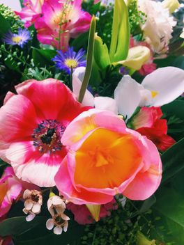 Bouquet of flowers closeup - image gratuit #337913