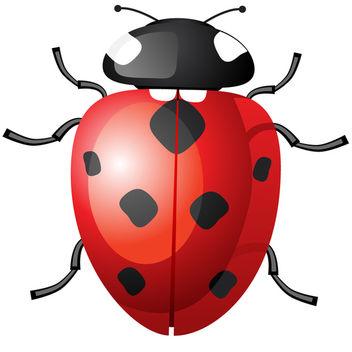 Vector Ladybug - Free vector #340233