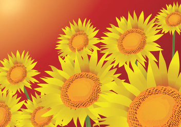 Summer Sunflowers Background - vector gratuit #341153