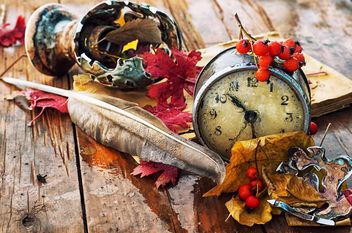 old alarm clock, feather, rowan and autumn leaves on wooden table - Free image #343553