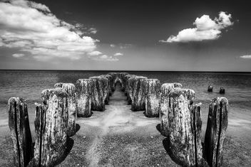 wooden piles in water - бесплатный image #344013