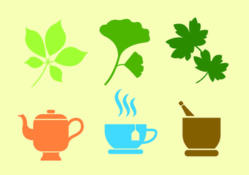 Set of Ginko Plant and Tea in Vector - Free vector #345513