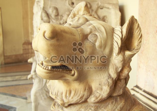 Head of animal in museum, Vatican, Italy - image #346183 gratis