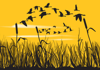 Reeds And Geese Silhouettes - Free vector #349673