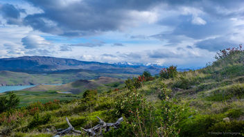 Landscape from Patagonia - Free image #349933