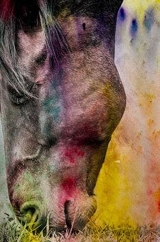 paint - Free image #349943