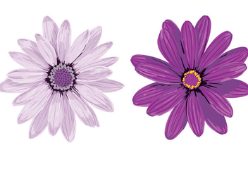 Purple Flower Vectors - vector gratuit #351663