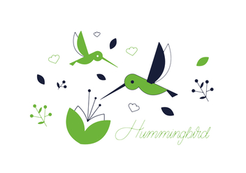 Free Hummingbird Vector - бесплатный vector #352553
