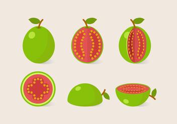 Vector Guava - Free vector #353963